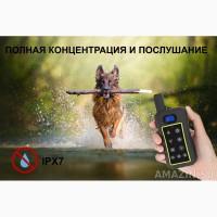 Дрессировочный ошейник для собак Trainertec DT-3200
