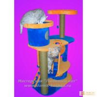 Домики для кошек, игровые комплексы, когтеточки,гамаки.