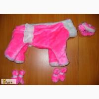 Индивидуальный пошив одежды для собак в Братске
