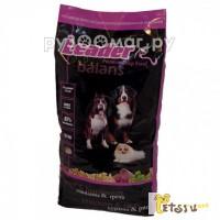 Leader Balans 2 кг