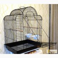 Клетку для птиц в Томске