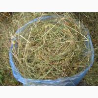 Продам сено в рулонах, мешках, тюках, для собак, лошадей, кроликов и др