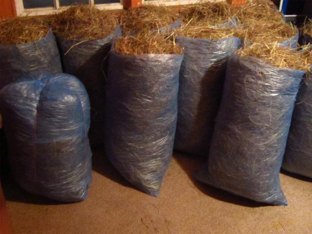 Фото 3. Продам сено в рулонах, мешках, тюках, для собак, лошадей, кроликов и др