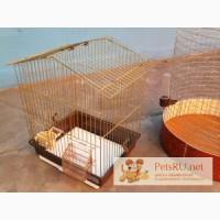 Клетки для птиц, Улан-Удэ