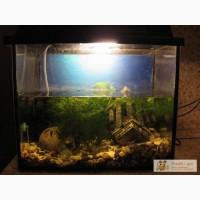 Продам б/у аквариум 25 литров