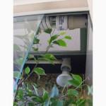 Террариум вертикальный из стекла