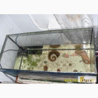 Аквариум с рыбками (сомы) -на 100 литров в Вольске