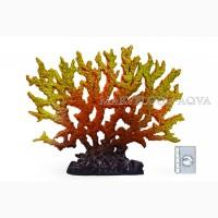 Оформление вашего аквариума - кораллы