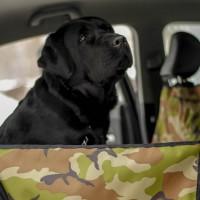 Автогамак для перевозки собак - Зелёный камуфляж