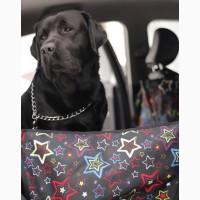 Автогамак для перевозки собаки в машине