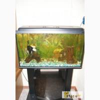 Продам аквариум в Кропоткине