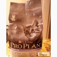 Корм сухой для котят Purina Pro Plan в Санкт-Петербурге