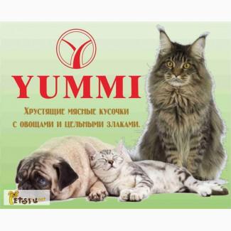 Корм yummi (юмми) для кошек