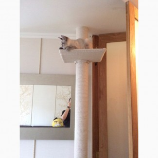 Белая когтеточка до потолка
