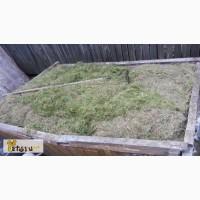 Продам сено на подстилки, укос 2016г., экологически чистое, безопасное