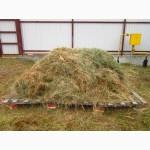 Продам сено на подстилки, ручной укос, премиум-сено, экологически чистое, безопасное