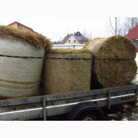 Продам сено с бесплатной доставкой по спб в тюках, рулонах, мешках