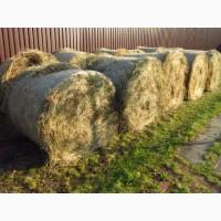 Сено для кроликов, сено для скота, сено на подстилки для собак 2017г