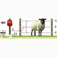 Электропастух- для Овец в Краснодаре в Краснодаре
