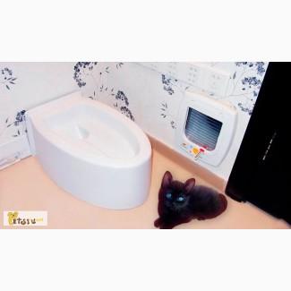 Автоматический кошачий туалет в Смоленске
