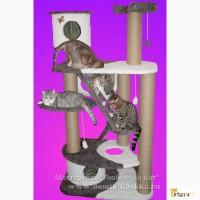 Домики, игровые комплексы для кошек.