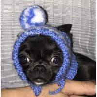 Шапки для собак (чихуа, йорка, тоя, Ксоло, Перуанских голых собак)