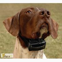 Электронные ошейники, антилай для собак от 1dog