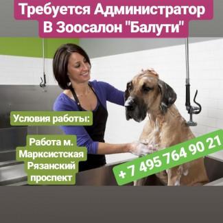 Администратор в салон для собак
