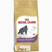 Royal Canin British Shorthair 34 2 кг