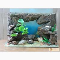 Рельефные объемные фоны для аквариума 3D в Казани