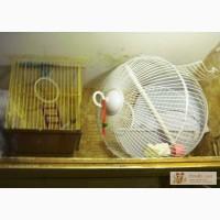 Клетки для попугаев в Челябинске