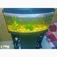 Аквариум 115 литров (Aquael) в Ижевске