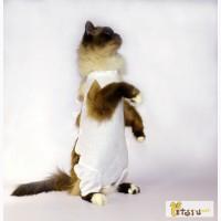 Послеоперационная попона для кошек и собак OSSO