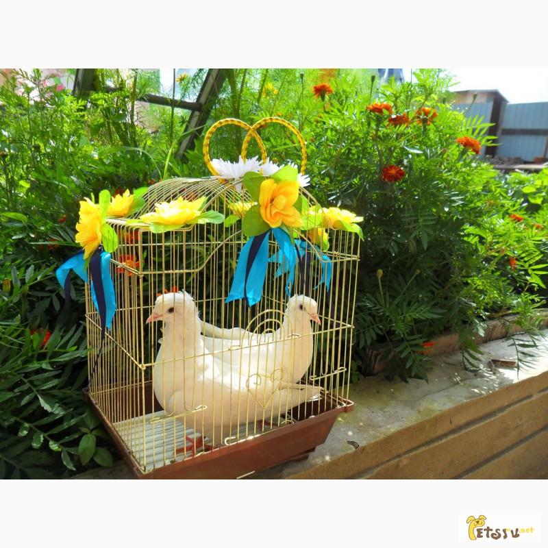 Фото 3/14. Белые голуби для свадьбы