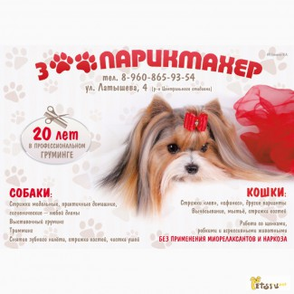 Стрижка собак и кошек в Астрахани. Профессиональный грумер