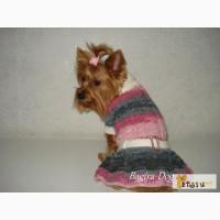 Одежда для собак Bagira-Dog